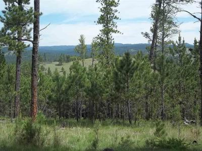 Custer Residential Lots & Land For Sale: Sd Hwy 89