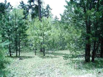 Deadwood Residential Lots & Land For Sale: Lot 21 Whale