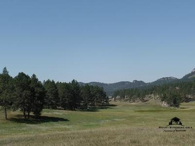 Custer Residential Lots & Land For Sale: Wind Song Valley Road