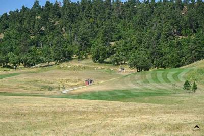 Spearfish Residential Lots & Land For Sale: Lot 9 Luke