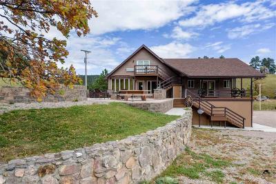 Sturgis Single Family Home For Sale: 20829 Mattson