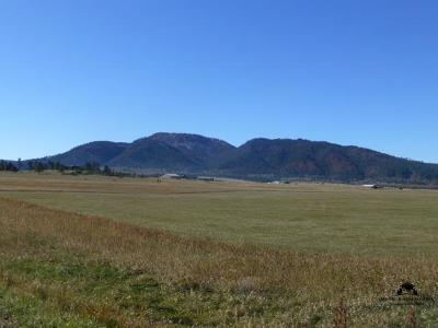 Spearfish Residential Lots & Land For Sale: Lot 1 Moeller Road
