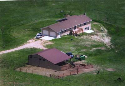 Belle Fourche Single Family Home For Sale: 19096 Upper Redwater Road