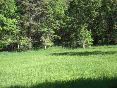 Whitewood Residential Lots & Land For Sale: Lot 9, Block 1 Whitewood Forest Acres