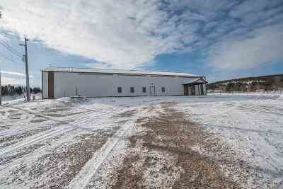 Sturgis Commercial For Sale: 1426 Short Track Road