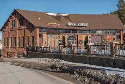 Deadwood, Lead Commercial For Sale: 141 Glendale