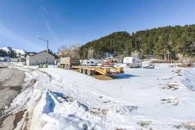 Deadwood, Lead Residential Lots & Land For Sale: Tract D McMasters