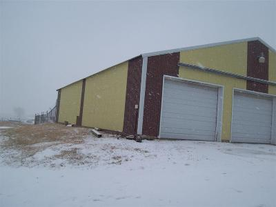 Sturgis Commercial For Sale: 2740 Racoon Rd