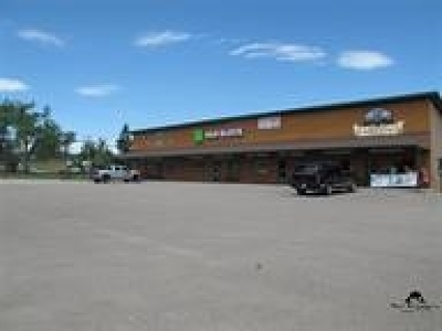 Sturgis Commercial For Sale: 1861 Lazelle