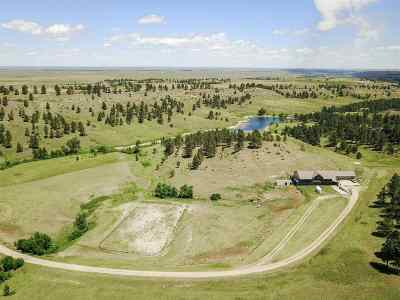 Belle Fourche Single Family Home For Sale: 19170 Elk Run