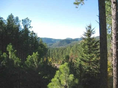 Deadwood, Lead Residential Lots & Land For Sale: Lot 16 Paradise Acres I