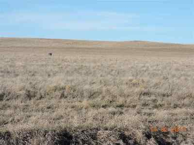 Belle Fourche Residential Lots & Land For Sale: 10788 Halle Rae
