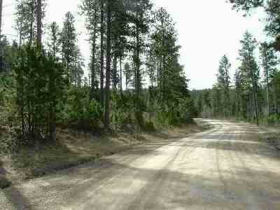 Spearfish SD Residential Lots & Land For Sale: $89,000