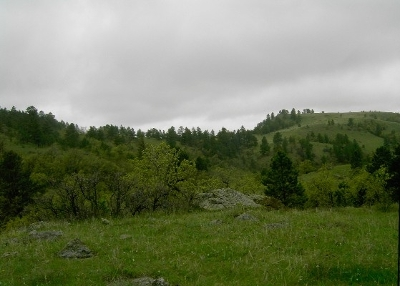 Spearfish SD Residential Lots & Land For Sale: $389,900