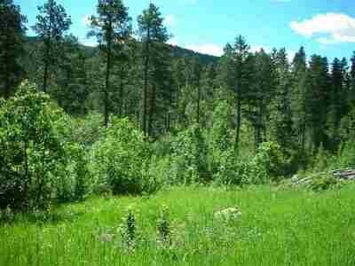 Deadwood Residential Lots & Land For Sale: Buena Vista Highway 14a