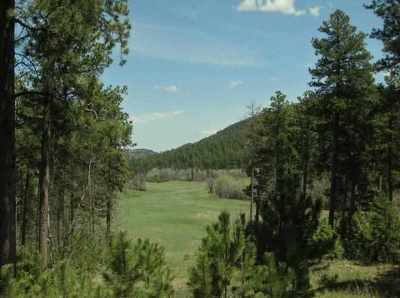 Deadwood Residential Lots & Land For Sale: Government Lots Highway 85