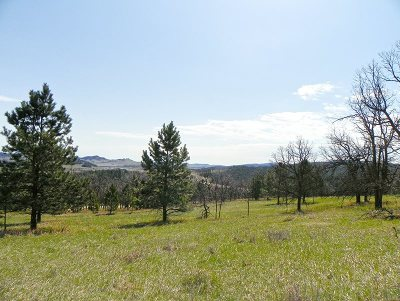 Spearfish SD Residential Lots & Land For Sale: $142,500