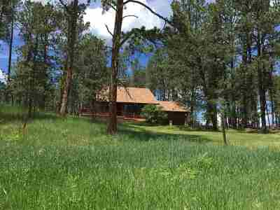 Custer Single Family Home For Sale: 25291 Mill Pond Estates