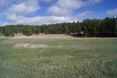 Custer SD Residential Lots & Land Sold: $74,000