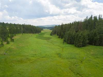 Deadwood Residential Lots & Land For Sale: 11860 Roubaix Lake