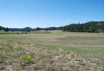 Custer SD Residential Lots & Land Sold: $68,000