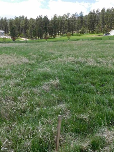Custer SD Residential Lots & Land Sold: $27,500