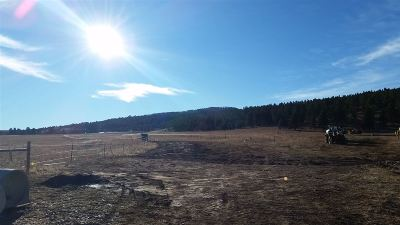 Sturgis Residential Lots & Land For Sale: Davenport Loop