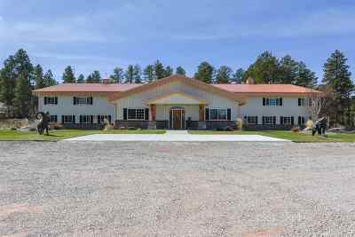 Deadwood Single Family Home For Sale: 20577 Highway 85