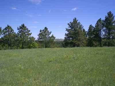 Sturgis Residential Lots & Land For Sale: Tbd S Oak Ridge