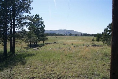 Custer SD Residential Lots & Land Sold: $20,900