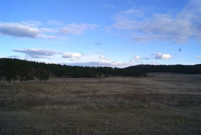 Custer SD Residential Lots & Land For Sale: $174,000