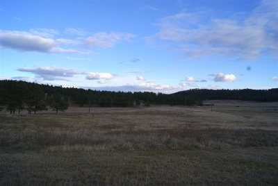 Custer SD Residential Lots & Land Sold: $94,000