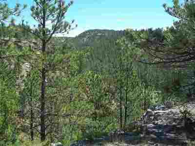 Custer Residential Lots & Land For Sale: Remington Rd