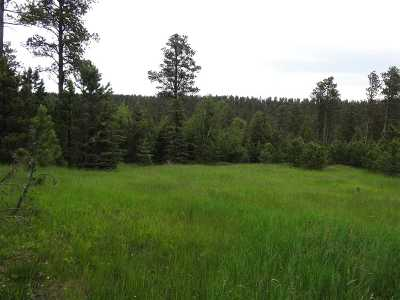 Deadwood, Lead Commercial For Sale: Hideaway Road/Tomahawk Lane