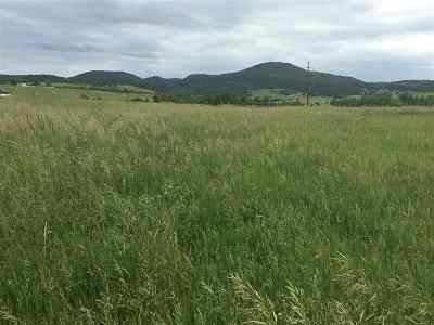 Spearfish SD Residential Lots & Land For Sale: $515,000