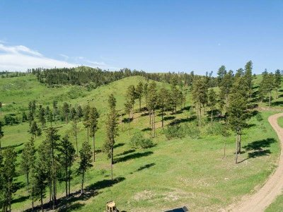 Deadwood Residential Lots & Land For Sale: Lot 2 Diamond Loop