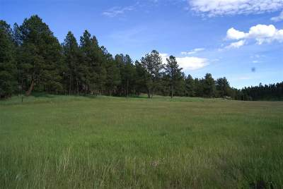 Custer SD Residential Lots & Land Sold: $78,925