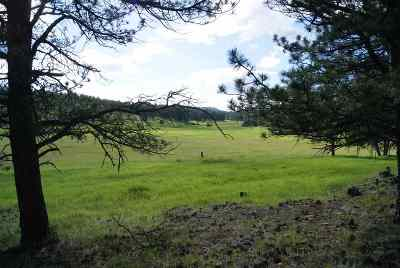 Custer SD Residential Lots & Land For Sale: $112,200