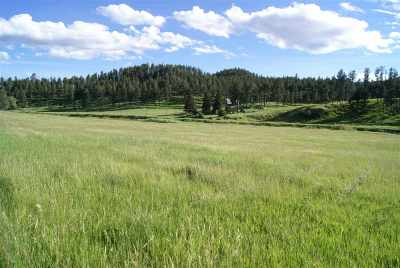 Custer SD Residential Lots & Land For Sale: $108,500