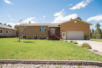 Sturgis Single Family Home For Sale: 1385 Otter Road