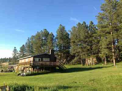 Custer Single Family Home Under Contract-Dont Show: 25635 Us Highway 385
