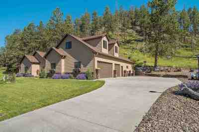 Hill City Single Family Home Sale Of Prop Contingency: 150 Minor Lake Circle