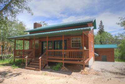 Lead Single Family Home For Sale: 21158 Last Chance Trail