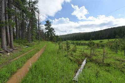 Deadwood, Lead Residential Lots & Land For Sale: Tract B1 Frosty Meadows