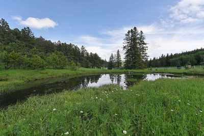 Deadwood, Lead Residential Lots & Land For Sale: Tract B3 Frosty Meadows