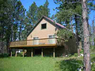 Single Family Home For Sale: 10430 S Rapid Creek Road