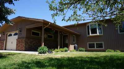 Sturgis Single Family Home For Sale: 2346 S Baldwin