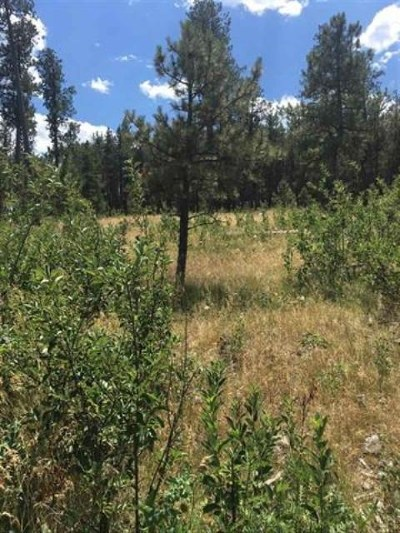Sturgis Residential Lots & Land For Sale: Lot 19 Rost Pl