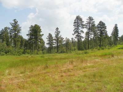 Spearfish SD Residential Lots & Land For Sale: $79,900