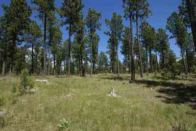 Custer SD Residential Lots & Land For Sale: $52,000